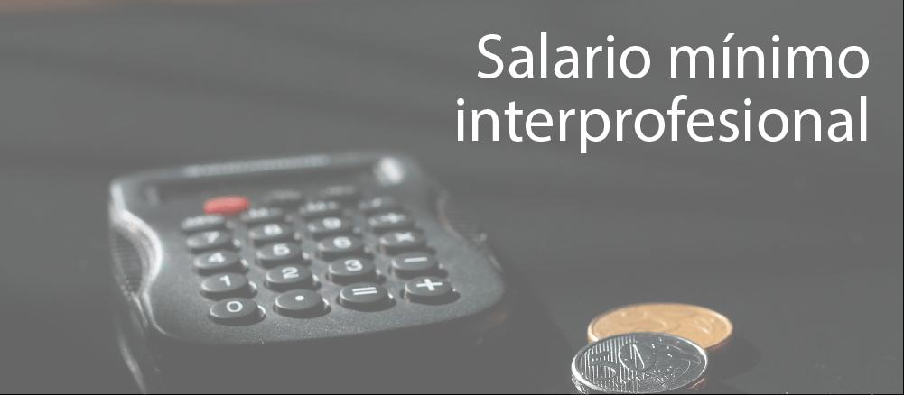 Salari mínim interprofessional